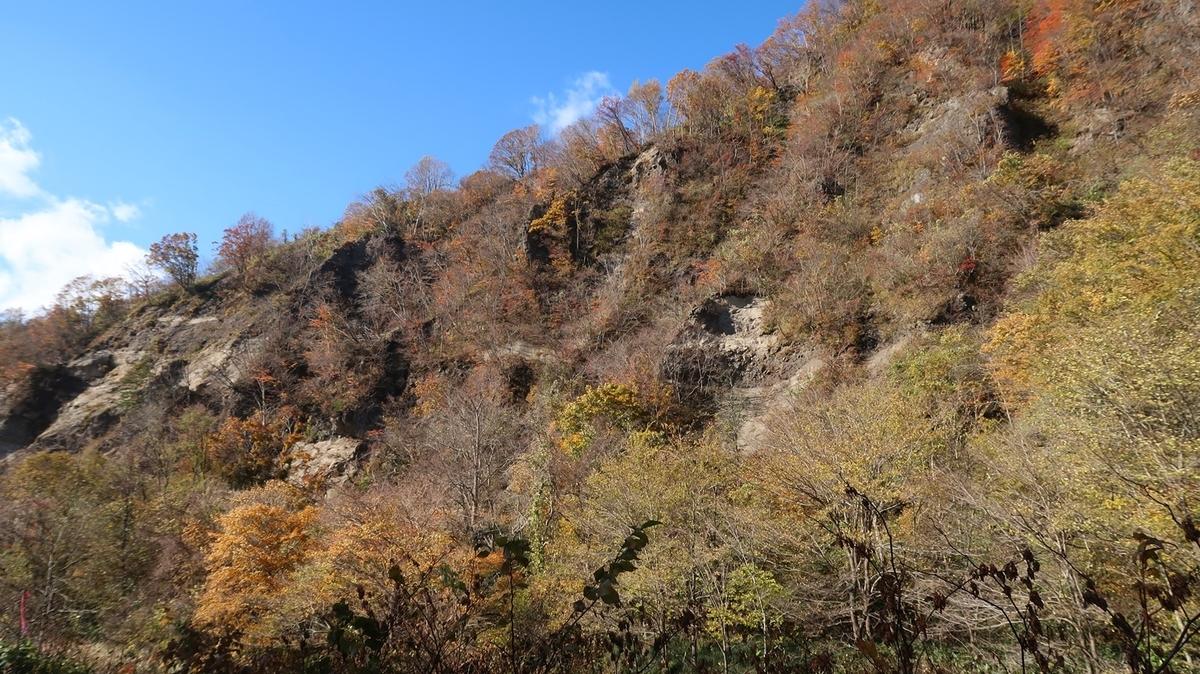 f:id:shirokumapanda:20200603001637j:plain