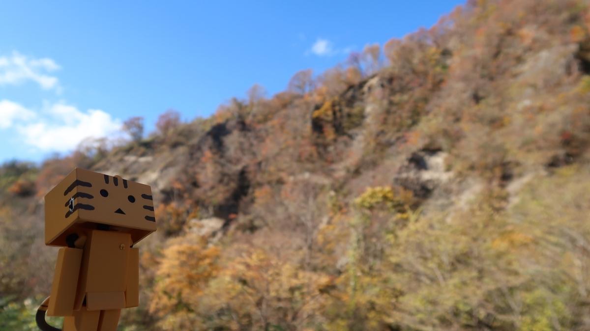 f:id:shirokumapanda:20200603001643j:plain