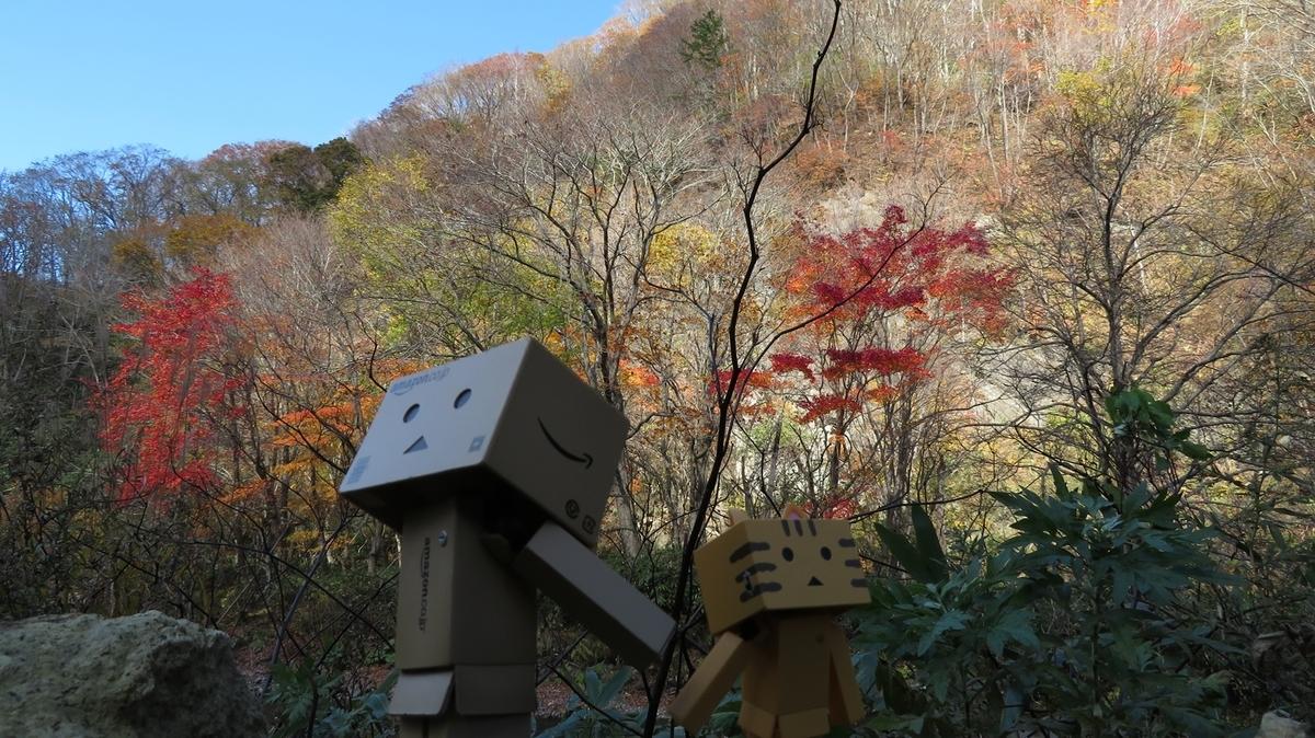 f:id:shirokumapanda:20200606221950j:plain