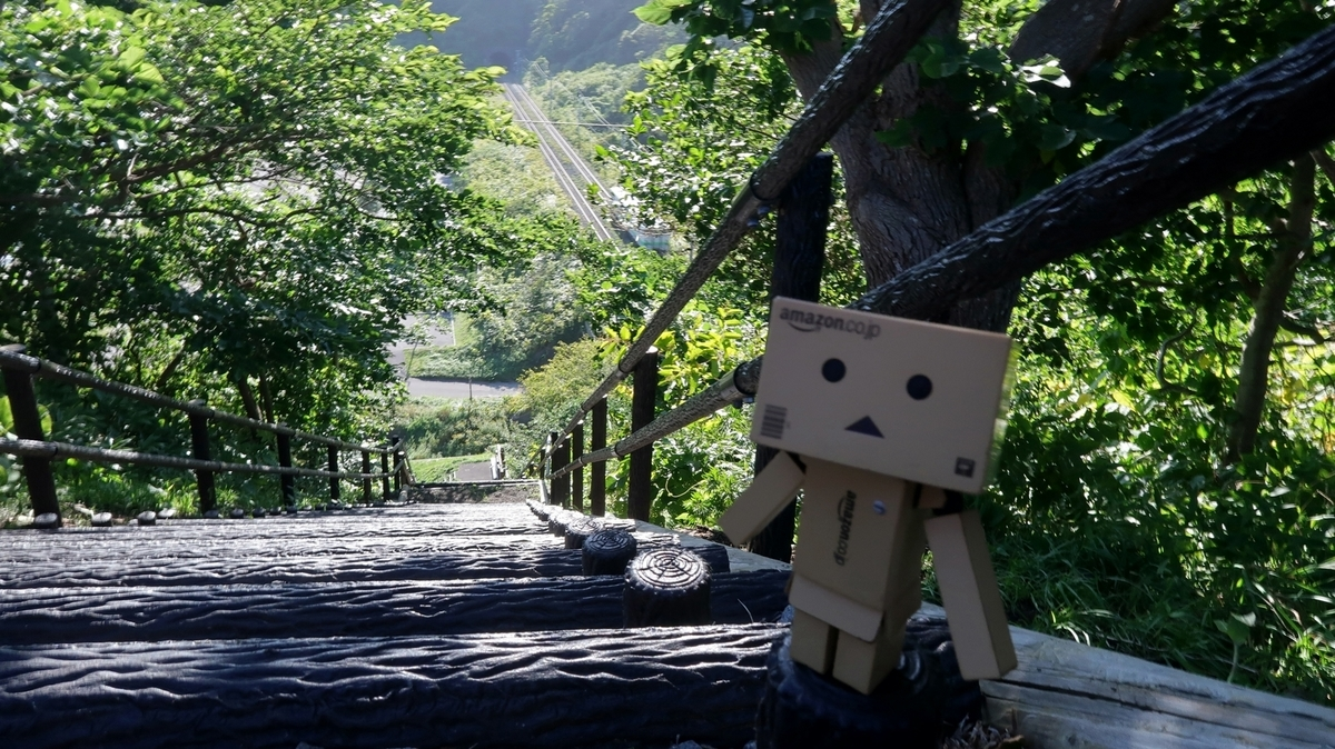 f:id:shirokumapanda:20200613221312j:plain