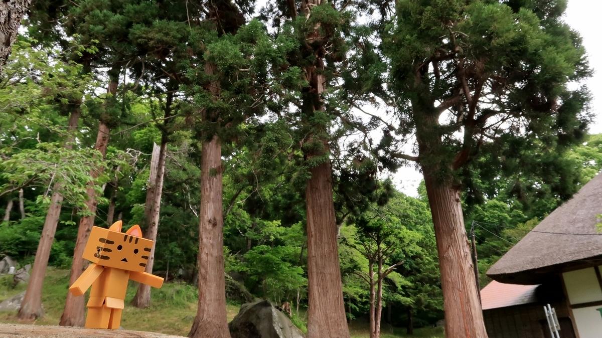f:id:shirokumapanda:20200615011437j:plain