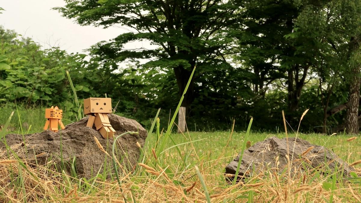 f:id:shirokumapanda:20200615011709j:plain