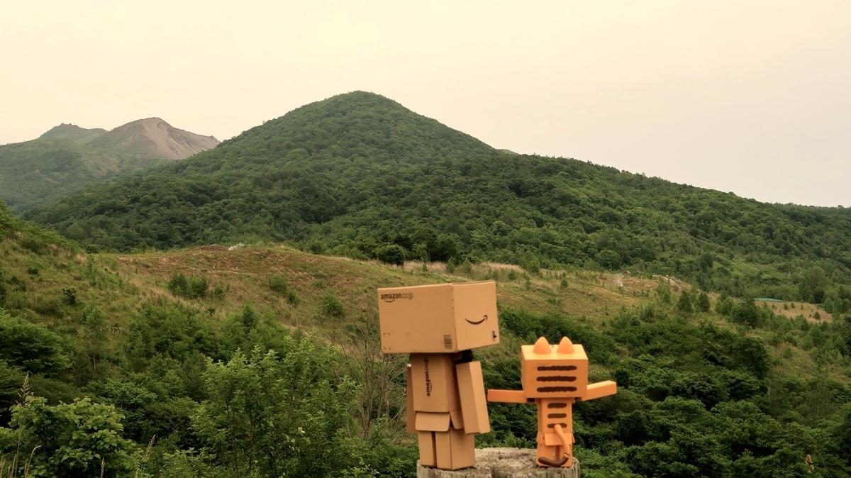 f:id:shirokumapanda:20200615011734j:plain