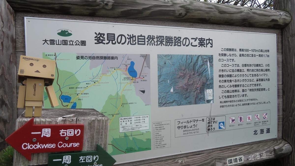 f:id:shirokumapanda:20200627232750j:plain