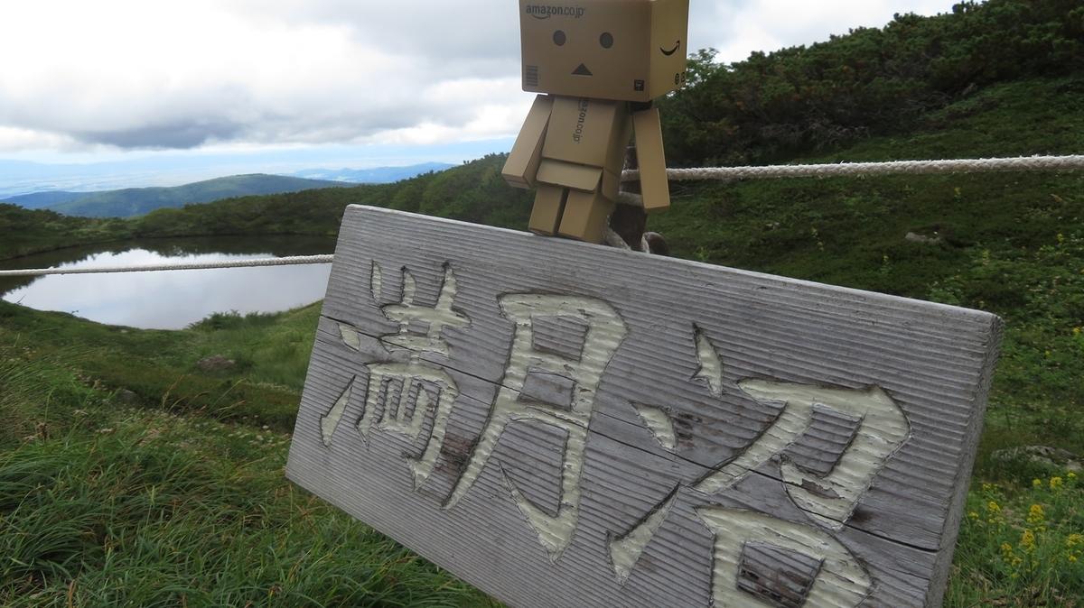 f:id:shirokumapanda:20200627232938j:plain