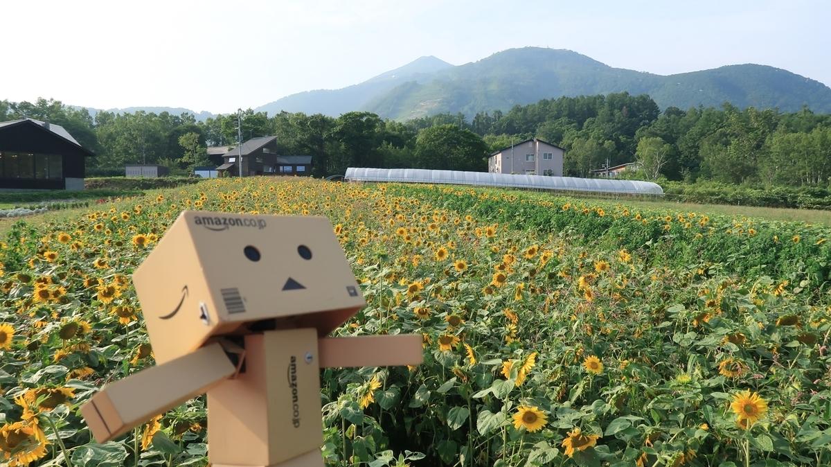f:id:shirokumapanda:20200724225732j:plain