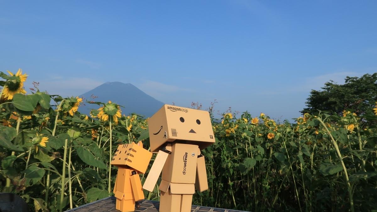 f:id:shirokumapanda:20200724225743j:plain