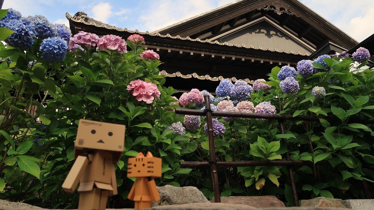 f:id:shirokumapanda:20200803015809j:plain