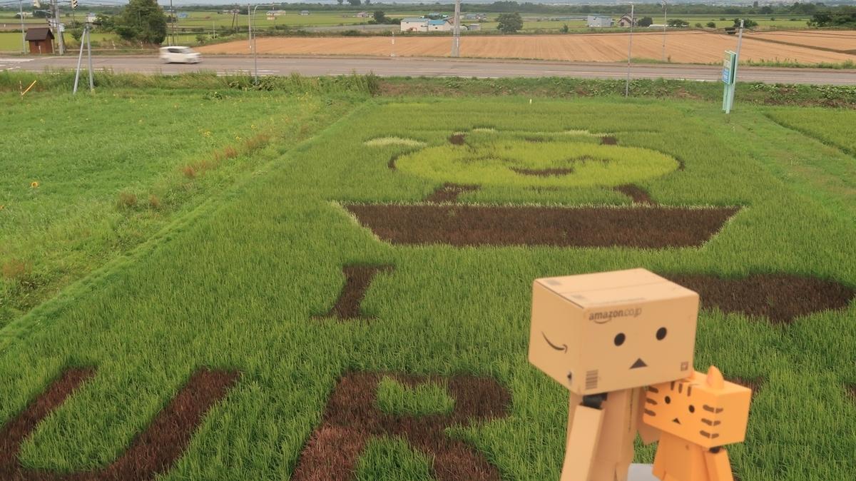 f:id:shirokumapanda:20200828224900j:plain