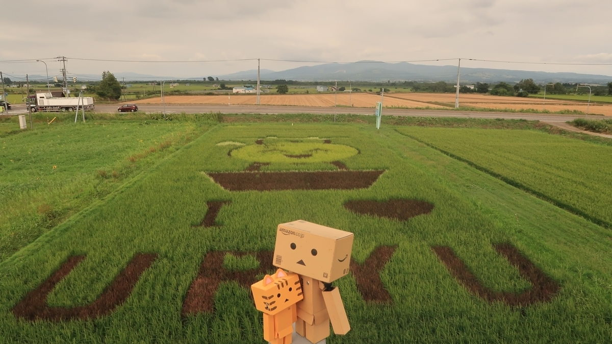 f:id:shirokumapanda:20200828224923j:plain