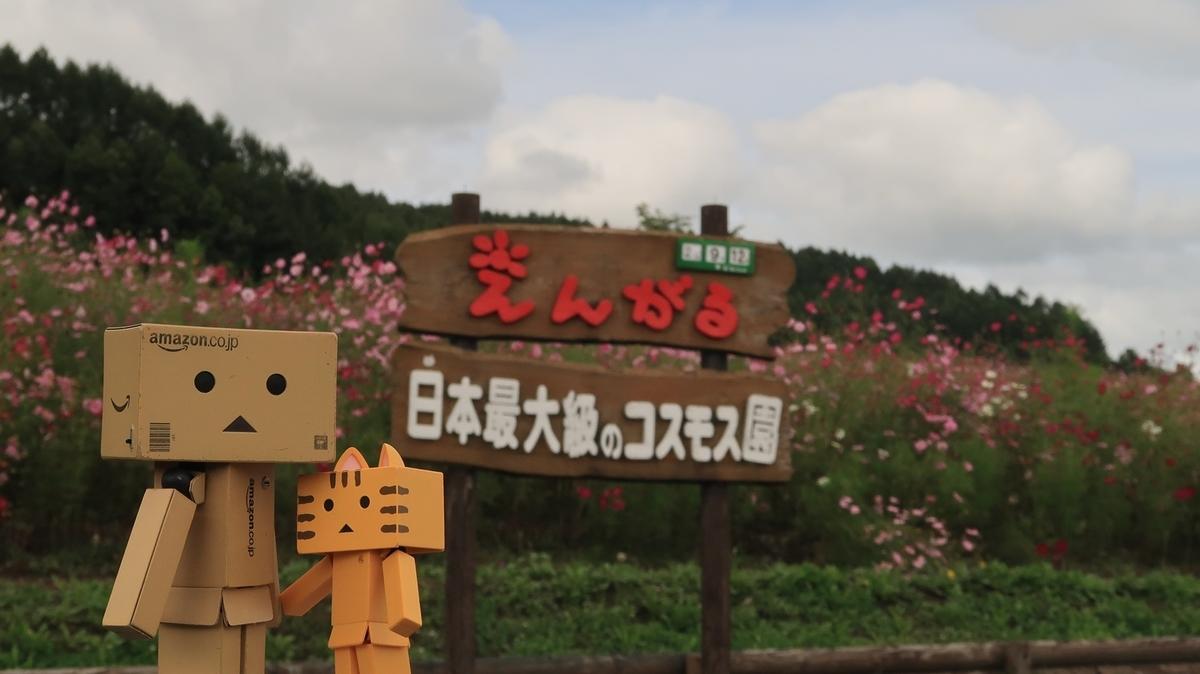 f:id:shirokumapanda:20200914220735j:plain