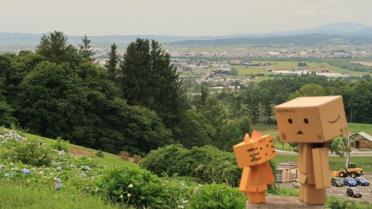 f:id:shirokumapanda:20200928230508j:plain