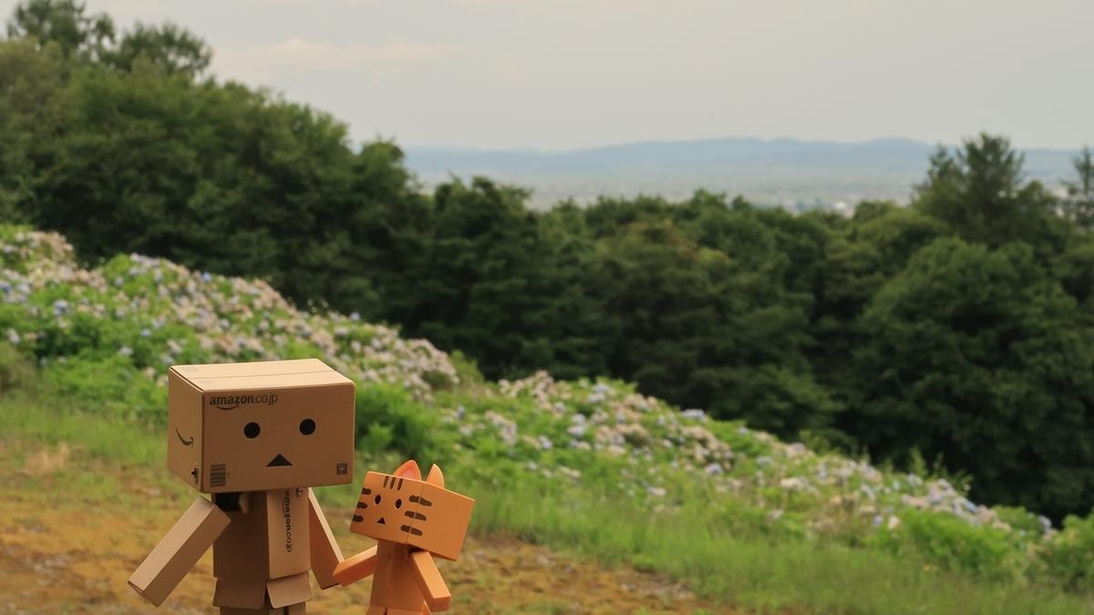 f:id:shirokumapanda:20200928230514j:plain