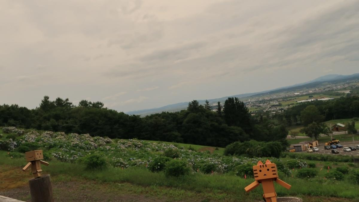 f:id:shirokumapanda:20200928230520j:plain