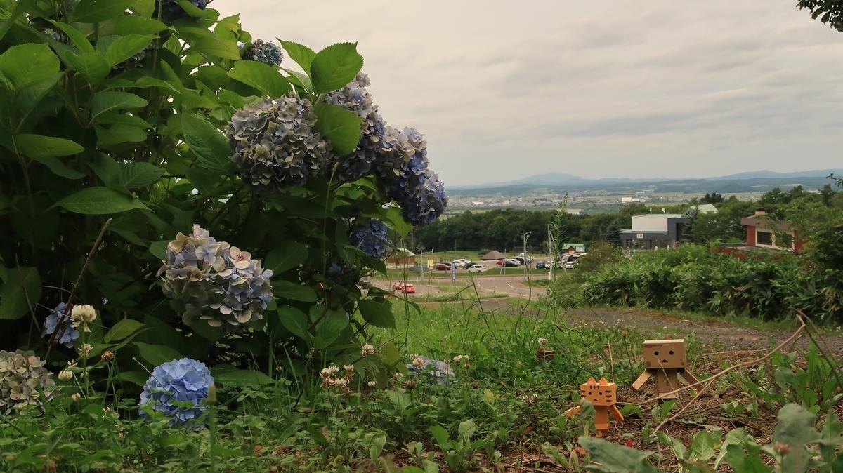 f:id:shirokumapanda:20200928230555j:plain