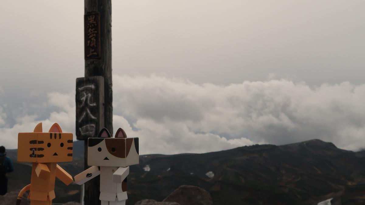 f:id:shirokumapanda:20201006001847j:plain