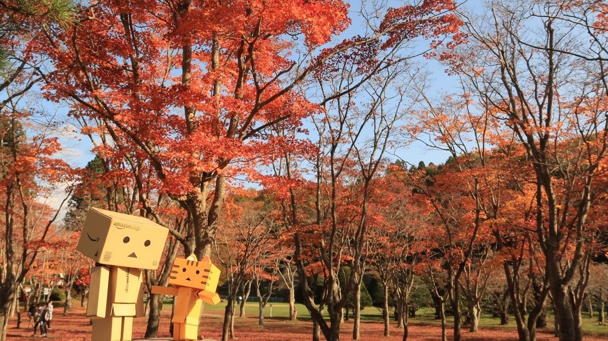 f:id:shirokumapanda:20201031234708j:plain