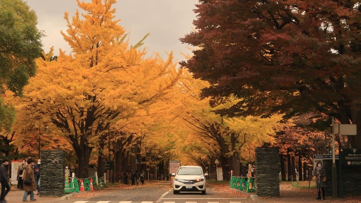 f:id:shirokumapanda:20201102005740j:plain