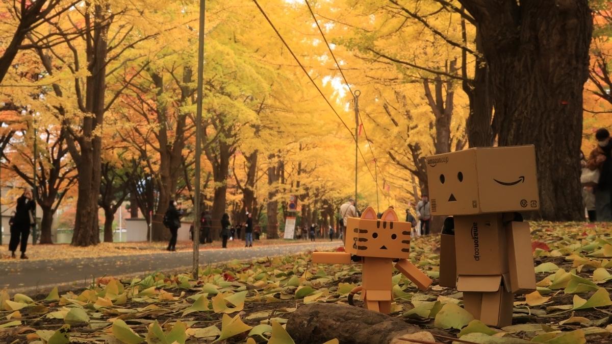 f:id:shirokumapanda:20201102005746j:plain