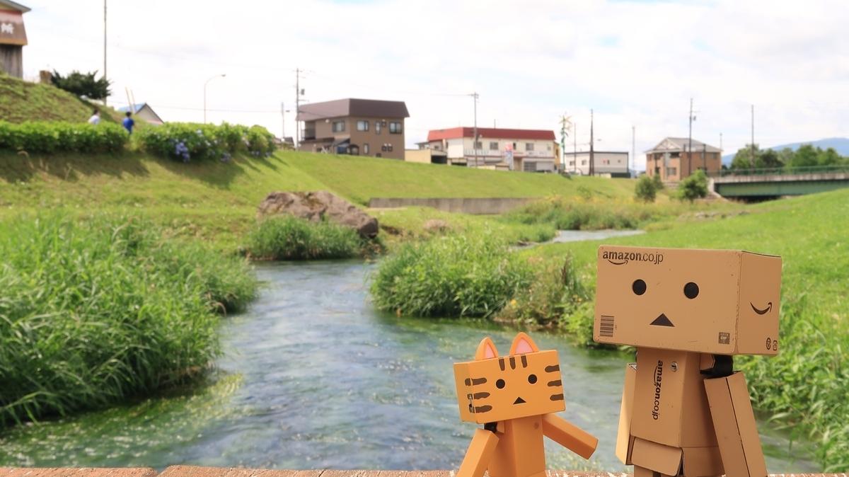 f:id:shirokumapanda:20201114012106j:plain