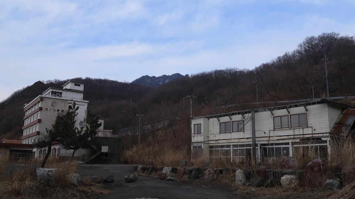 f:id:shirokumapanda:20201127224633j:plain