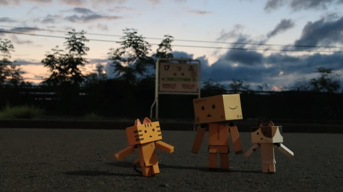 f:id:shirokumapanda:20201214211010j:plain