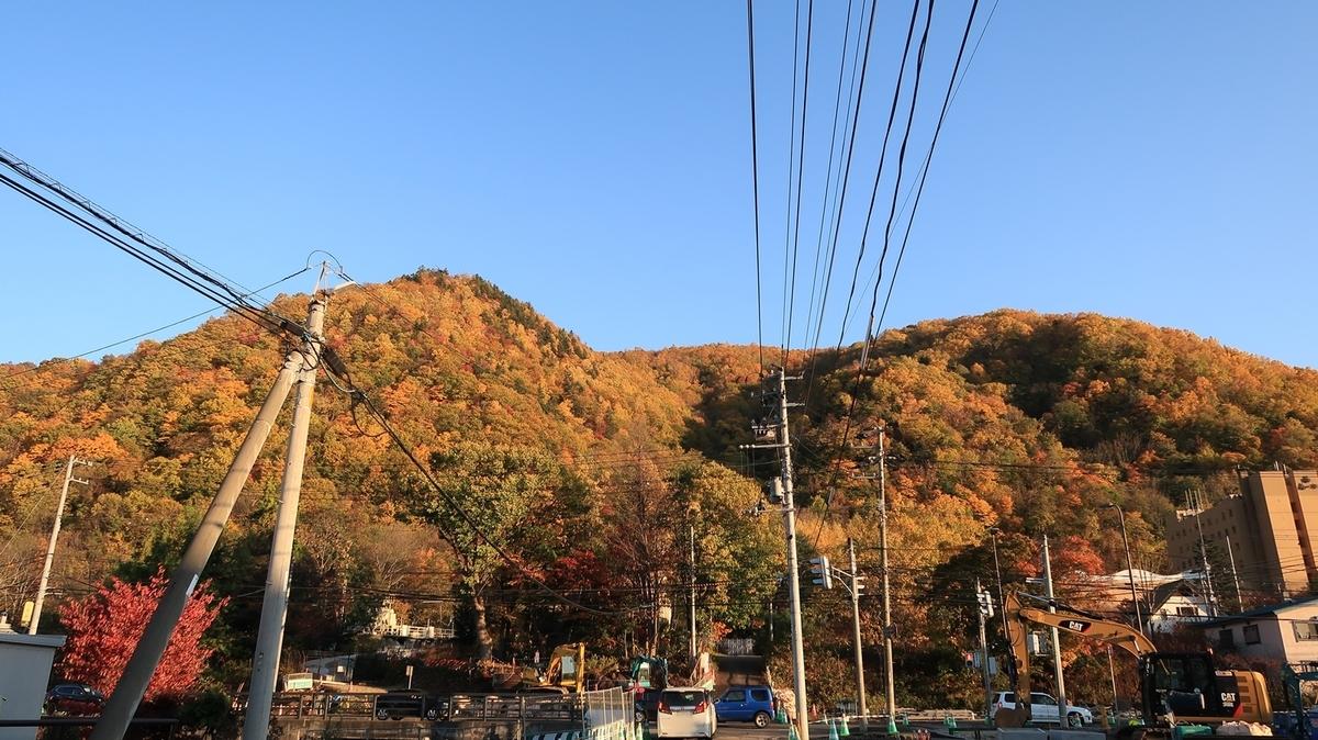 f:id:shirokumapanda:20210112012827j:plain