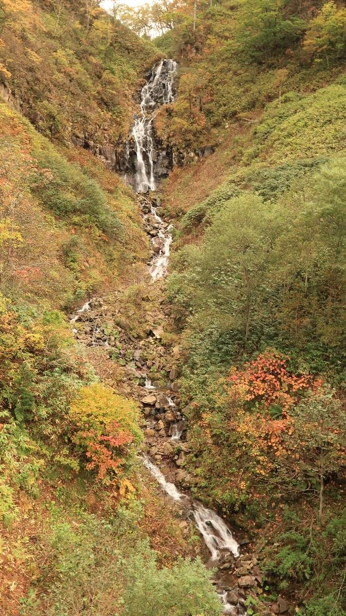 f:id:shirokumapanda:20210116232249j:plain