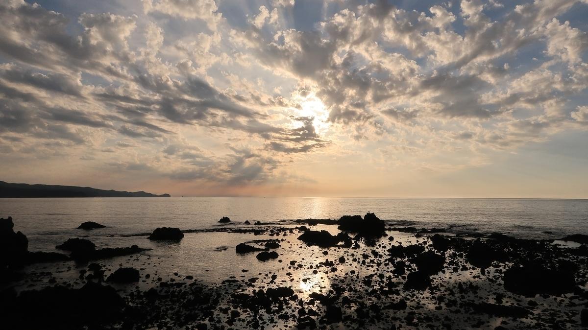 f:id:shirokumapanda:20210119234230j:plain