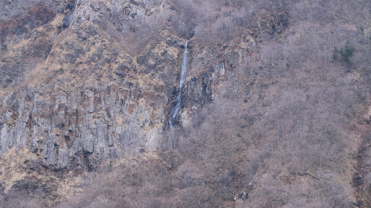 f:id:shirokumapanda:20210131233241j:plain