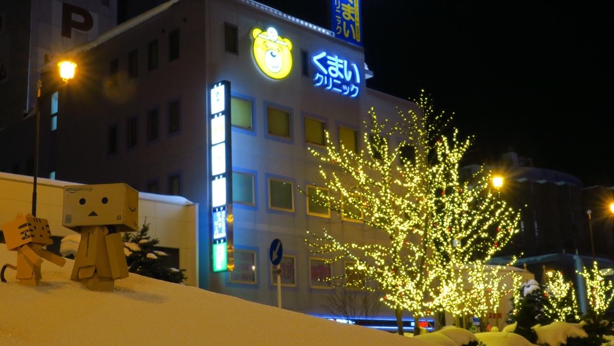 f:id:shirokumapanda:20210305014218j:plain