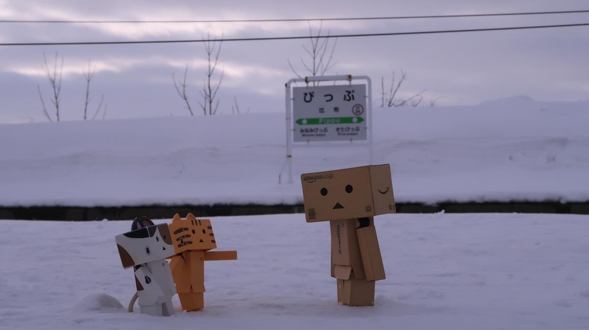 f:id:shirokumapanda:20210312011148j:plain