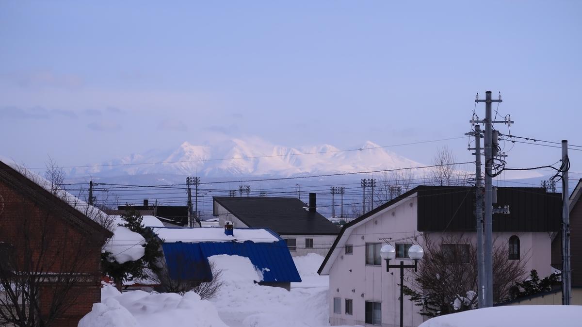 f:id:shirokumapanda:20210312011208j:plain