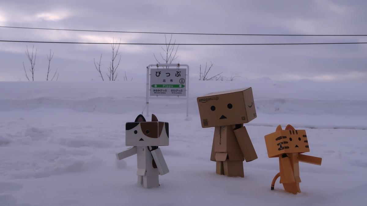 f:id:shirokumapanda:20210312011240j:plain