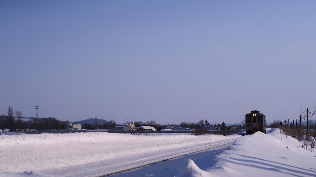 f:id:shirokumapanda:20210312224653j:plain