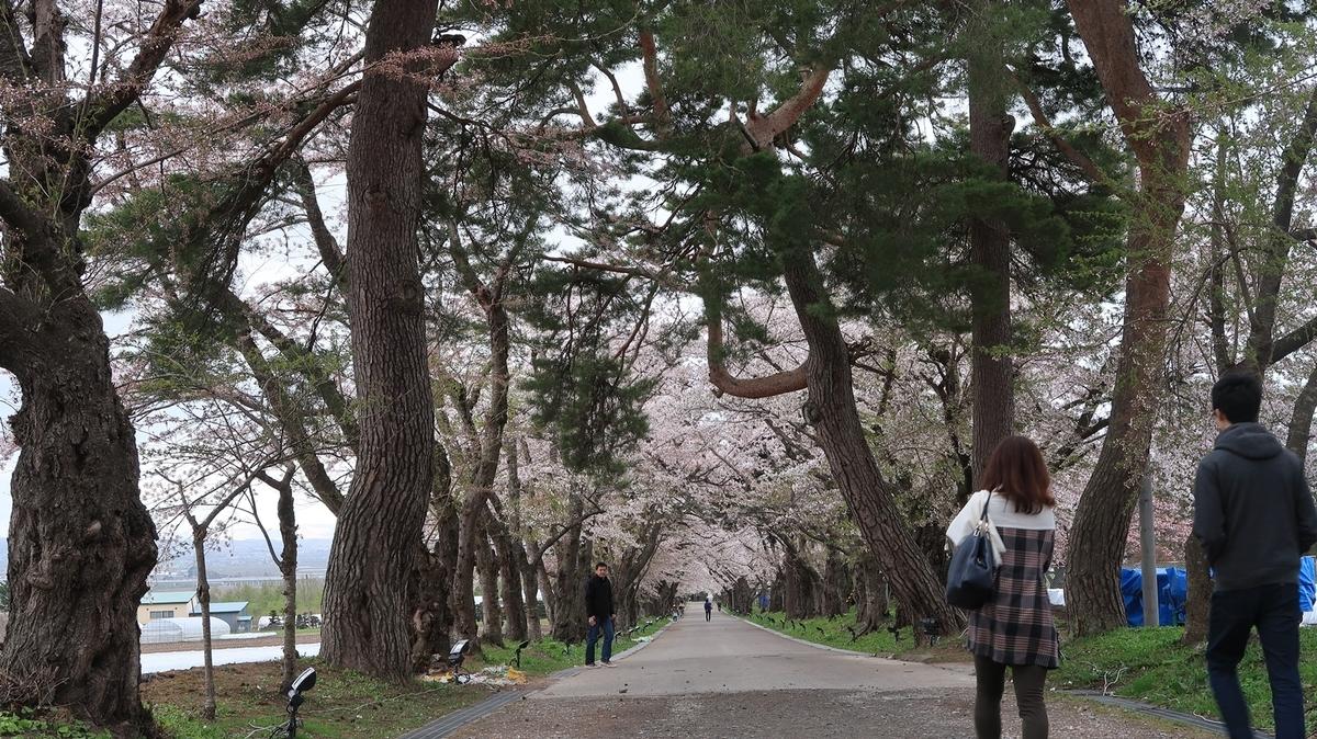 f:id:shirokumapanda:20210418235229j:plain