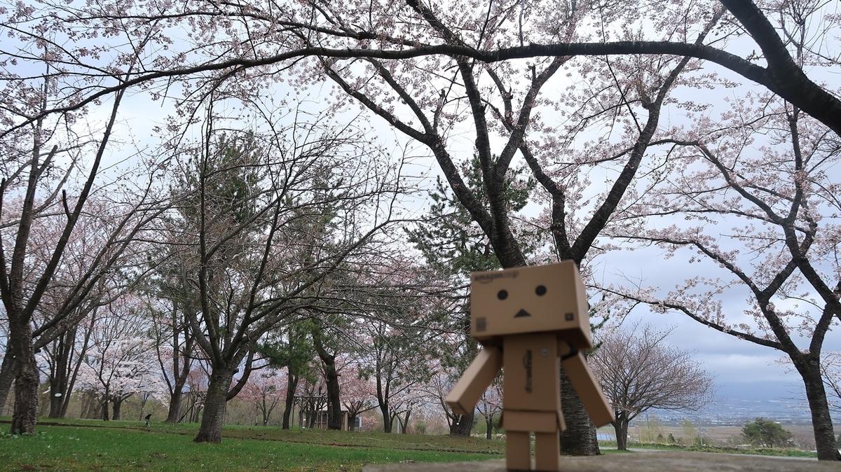 f:id:shirokumapanda:20210418235301j:plain