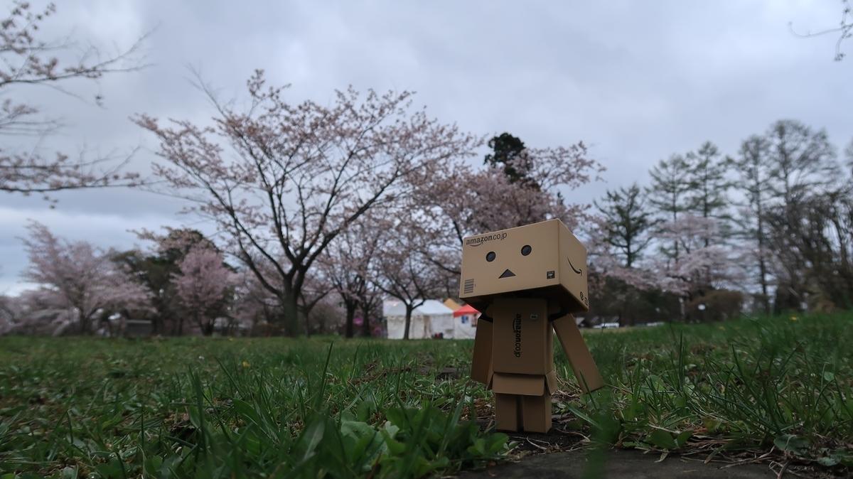 f:id:shirokumapanda:20210418235307j:plain
