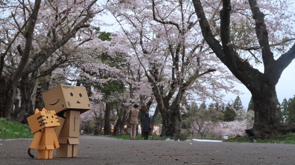 f:id:shirokumapanda:20210418235356j:plain