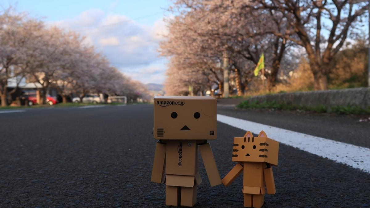f:id:shirokumapanda:20210419234309j:plain