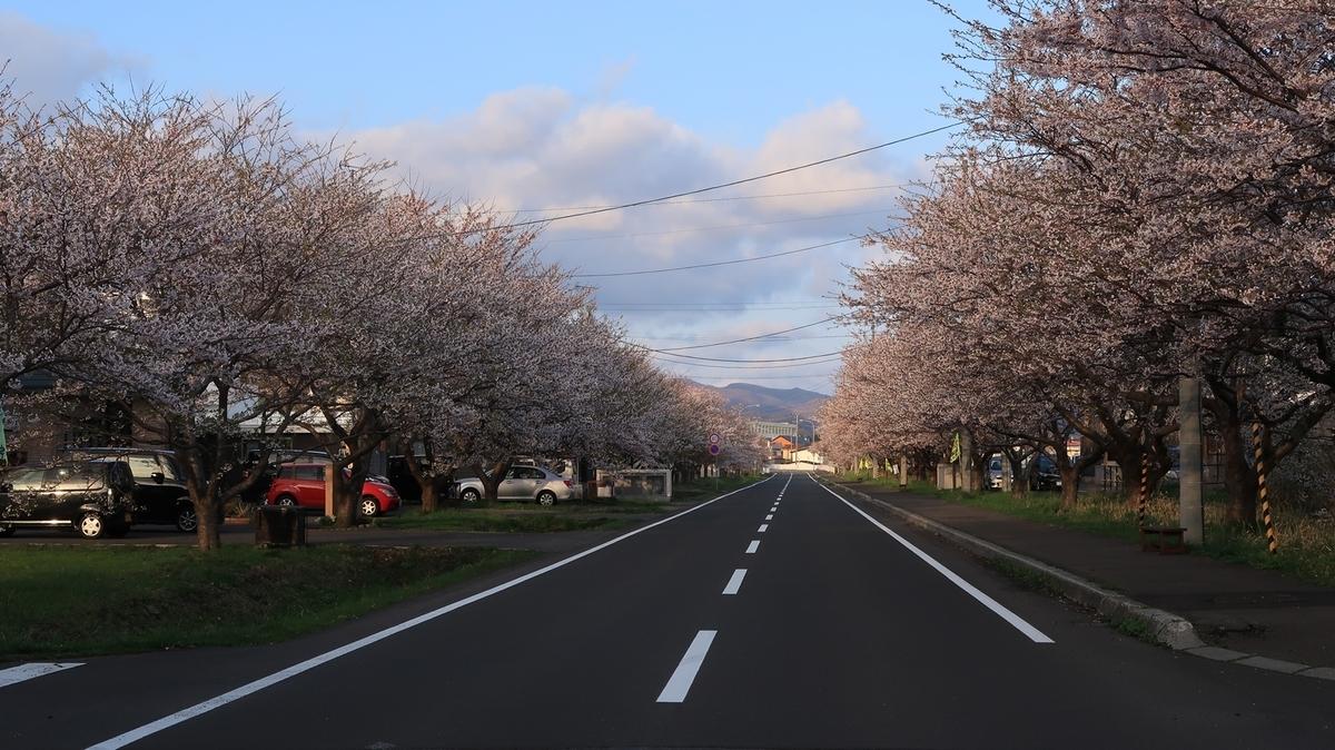 f:id:shirokumapanda:20210419234316j:plain