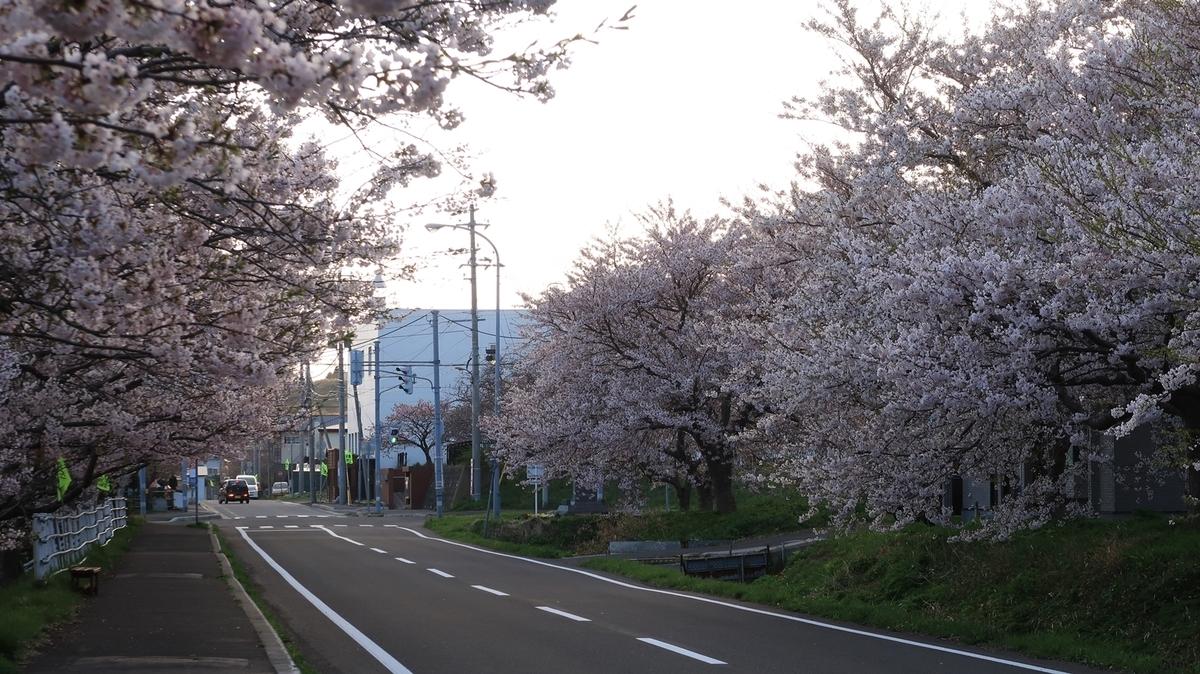 f:id:shirokumapanda:20210419234327j:plain