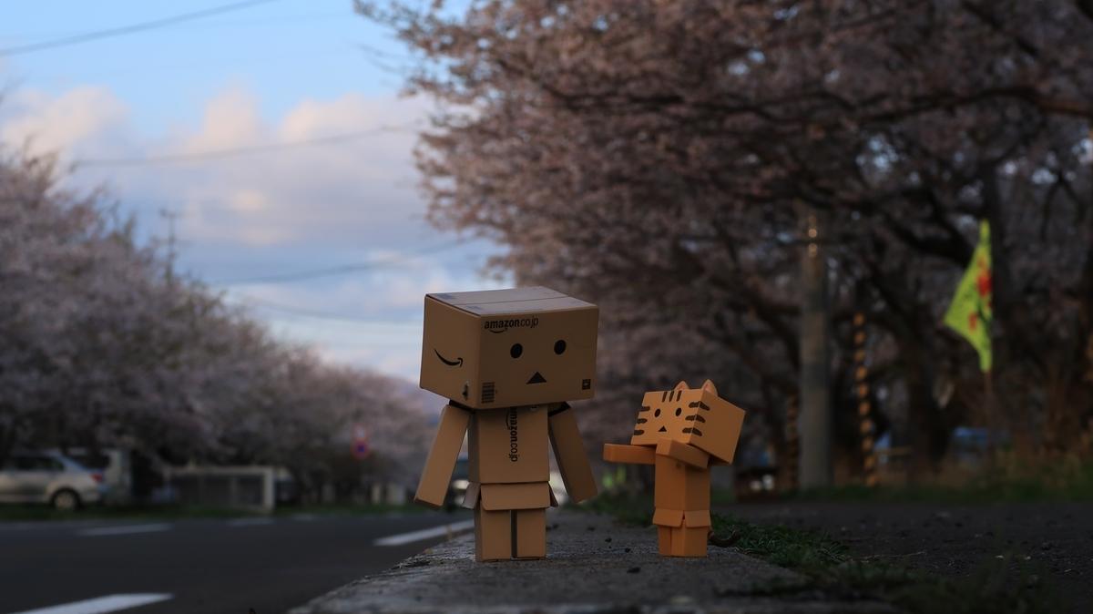 f:id:shirokumapanda:20210419234333j:plain
