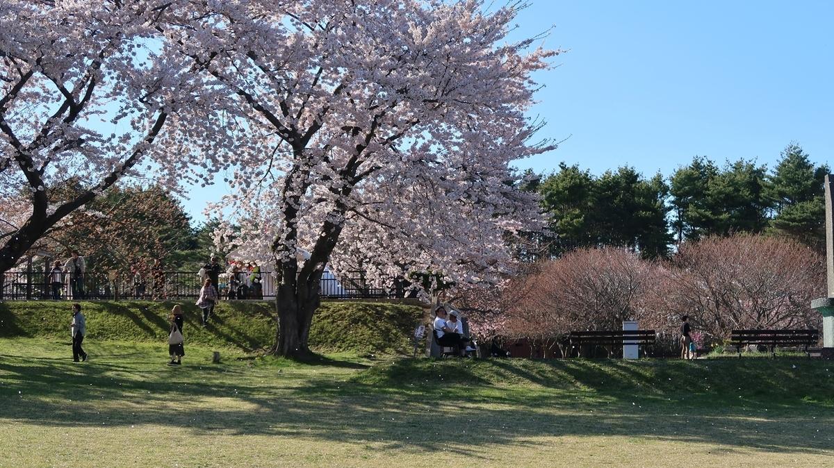 f:id:shirokumapanda:20210426225742j:plain