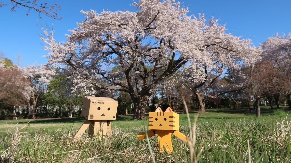 f:id:shirokumapanda:20210426225800j:plain