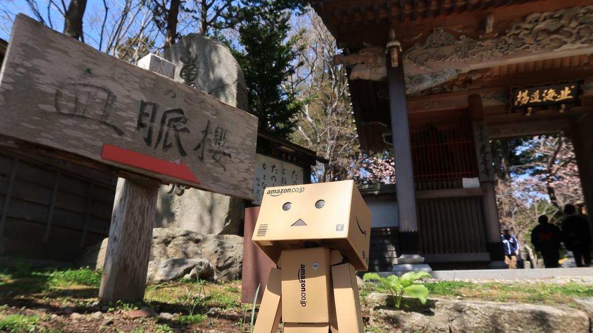 f:id:shirokumapanda:20210430003922j:plain