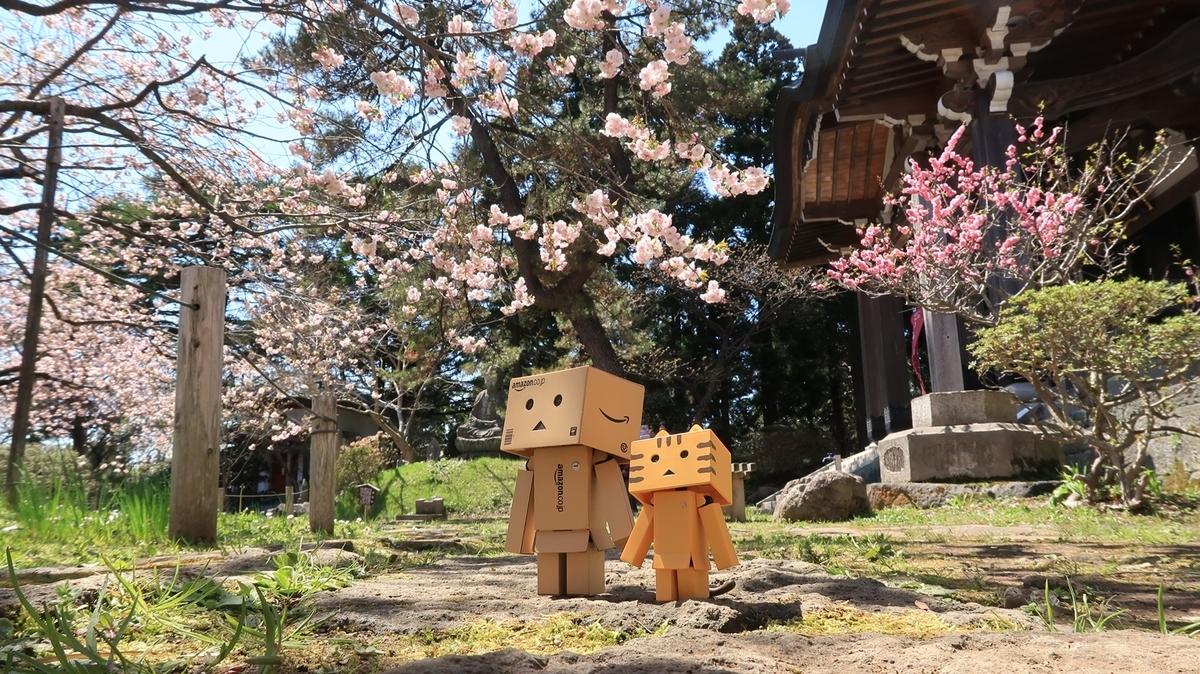 f:id:shirokumapanda:20210430004058j:plain