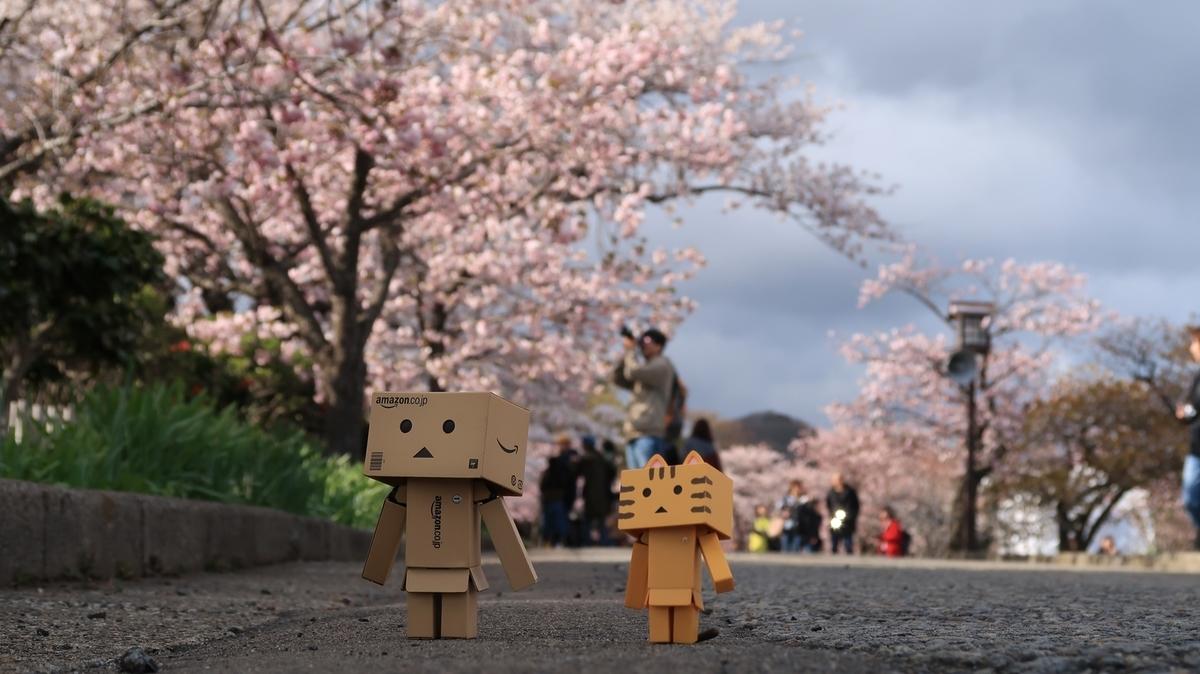 f:id:shirokumapanda:20210509221113j:plain