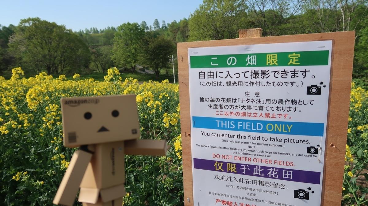 f:id:shirokumapanda:20210515003259j:plain