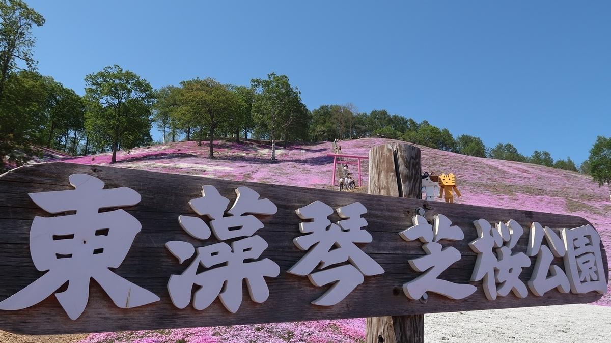 f:id:shirokumapanda:20210522214830j:plain